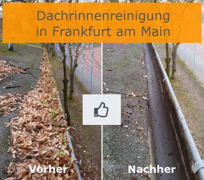 Dachrinnenreinigung Frankfurt